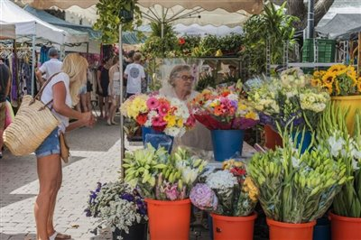 Alcudia Market 02