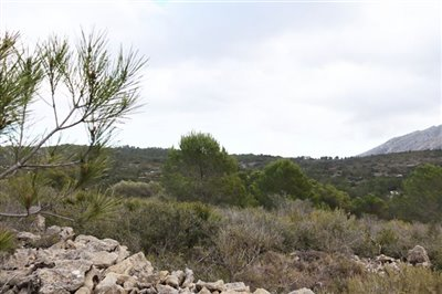 5824-plot-land-for-sale-in-jalon-58381-large