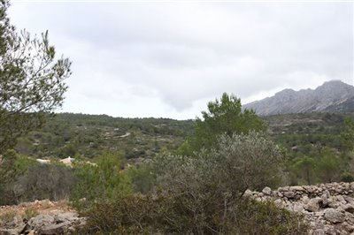5824-plot-land-for-sale-in-jalon-58387-large