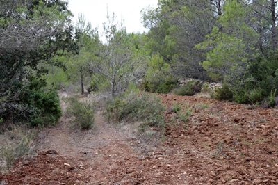 5824-plot-land-for-sale-in-jalon-58360-large