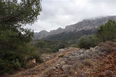 5824-plot-land-for-sale-in-jalon-58366-large