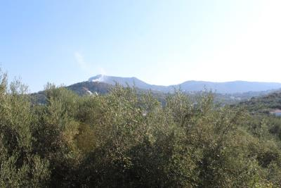 Almyrida-House-For-Sale-For-Rent0016