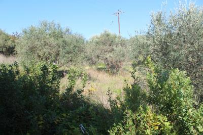 Almyrida-House-For-Sale-For-Rent0017