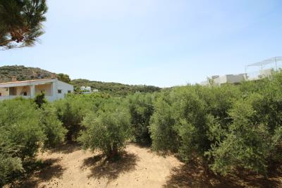 Greece-Crete-Akmyrida-House-For-Sale0009