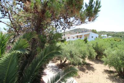 Greece-Crete-Akmyrida-House-For-Sale0010