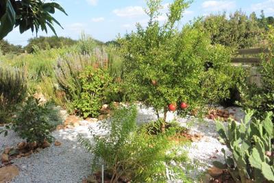 Crete-Vamops-Villa-Pool-Heated-For-Sale0059