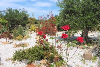 Crete-Vamops-Villa-Pool-Heated-For-Sale0062