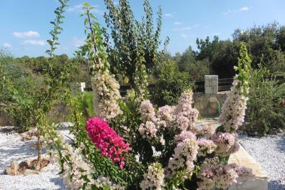 Crete-Vamops-Villa-Pool-Heated-For-Sale0003