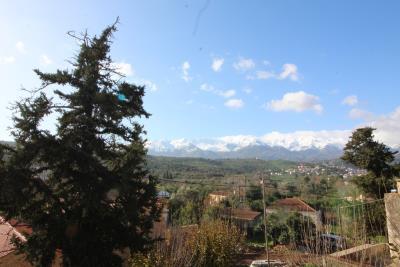 Armeni-House-for-Sell-for-Renovation-MariaIMG_4613