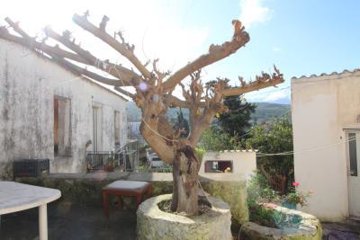 Armeni-House-for-Sell-for-Renovation-MariaIMG_4620