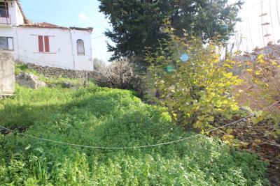 Armeni-House-for-Sell-for-Renovation-MariaIMG_4625