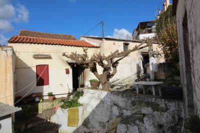 Armeni-House-for-Sell-for-Renovation-MariaIMG_4633