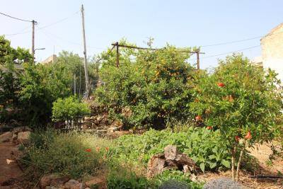 House-for-restauration-for-sale-Greece-Crete-Kokkino-CHorio0003