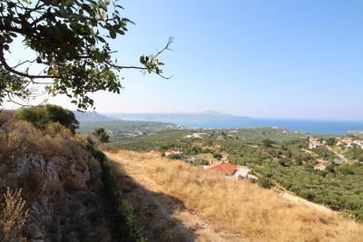 panoramic-plot-tsivaras-IMG_3081