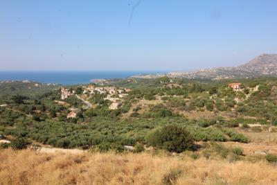 panoramic-plot-tsivaras-IMG_3088