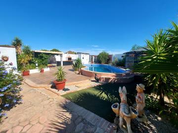 rear-garden-pool