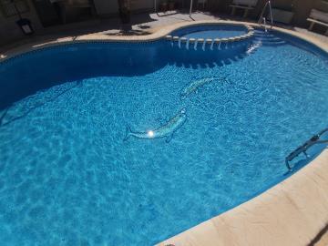 P6-Pool-2