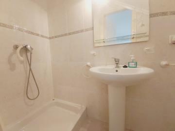 Downstairs-shower-2