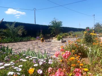 Flower-Garden-