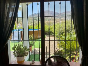 Window-views