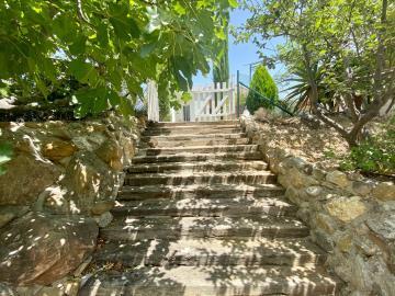 Wooden-steps-2