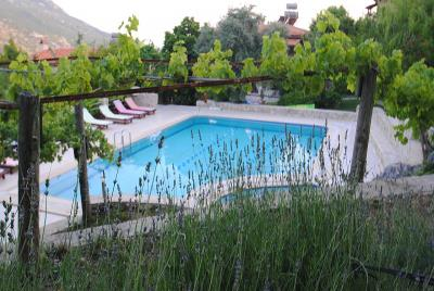 mountain-villas-for-sale-cottage-islamlar-village-kalkan--56
