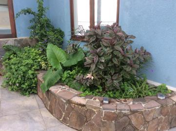 Garden_bed