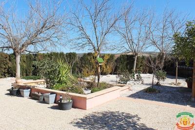 GARDEN---33-Orange-Grove-Saydo-Park-Mollina