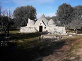 Image No.8-Propriété de 1 chambre à vendre à San Michele Salentino
