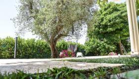 Image No.4-Propriété de 3 chambres à vendre à San Michele Salentino