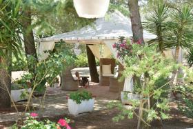 Image No.19-Propriété de 3 chambres à vendre à San Michele Salentino