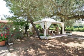 Image No.21-Propriété de 3 chambres à vendre à San Michele Salentino