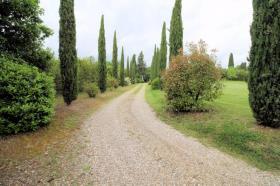 Image No.5-Ferme de 3 chambres à vendre à Lucignano