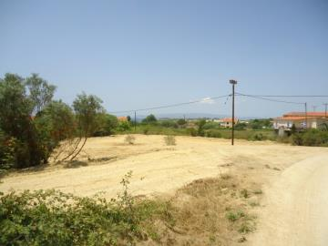 LAND-FOR-SALE-MAIN