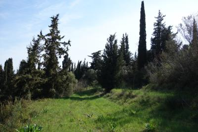 land-for-sale-3