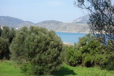 land-for-sale-13