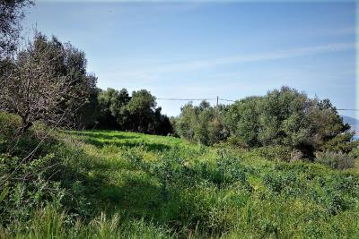 land-for-sale-16
