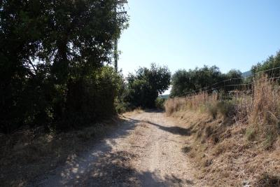 land-for-sale-1