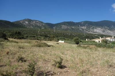 land-for-sale-7