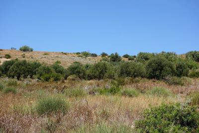 land-for-sale-4