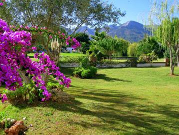 IMG_3615-garden