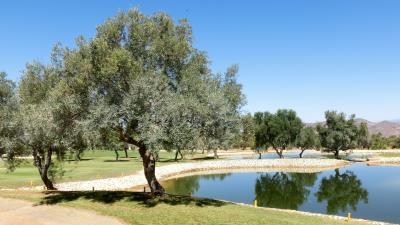 CIMG1191-Lauro-Golf-Course-16x9-05Sep2014