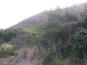 Image No.1-Terre à vendre à Falmouth