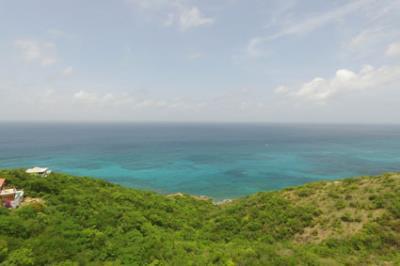 Island-Time-17
