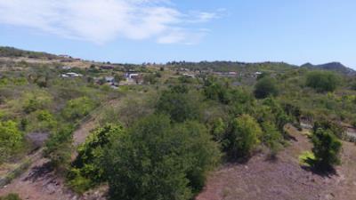 Pic-Land-1
