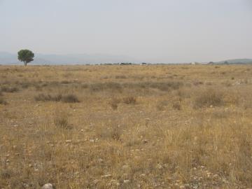 Land-details-Parroquia-004