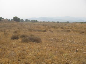 Land-details-Parroquia-005