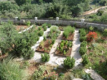 Veggitable-garden