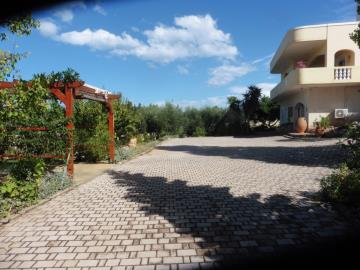 Villa-for-sale-in-Chania-Crete-with-a-large-front-jard