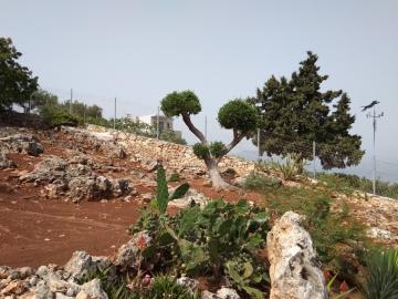 Property-in-Apokoronas-Chania-Crete-for-sale-with-a-rocky-garden